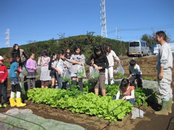 角田さんの畑